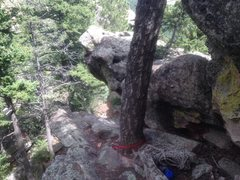 Rock Climbing Photo: The rap tree to the alternate down climb (see comm...