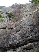 Rock Climbing Photo: Beginner's Luck, right of center.
