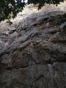 Rock Climbing Photo: Nine Lives.