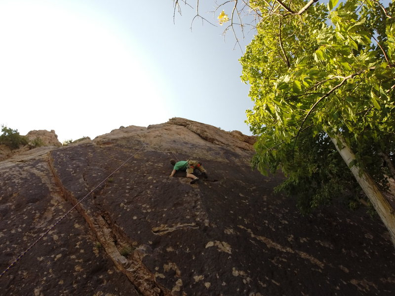 Todd climbing the 5.10 Perestroika