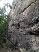 Rock Climbing Photo: Fume Wall.