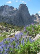 Rock Climbing Photo: Pingora from the Arrowhead Pass