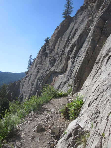Rock Climbing In Hoback Shield