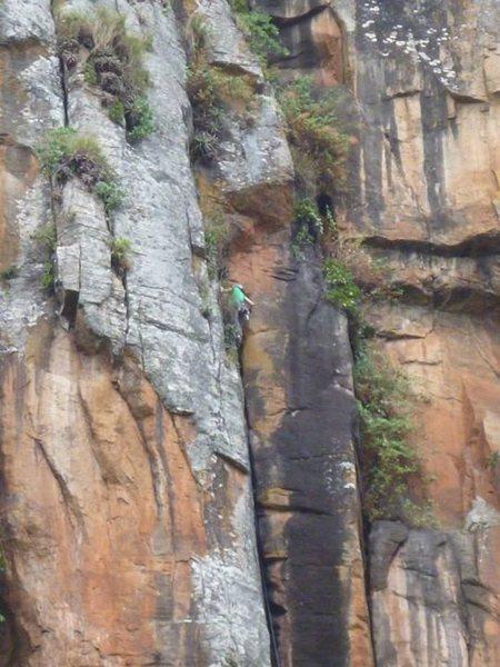 Rock Climbing Photo: Tree birth