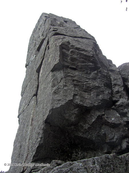 Looking up the top 2/3 of the pillar. The west face with the crack and south side are both in view.