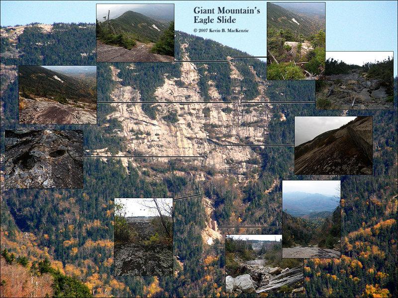 Giant Mtn. Eagle Slide