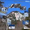 Upper Wolfjaw Mtn. White Slide - Winter