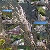 Dix Mtn. Hunters Pass Slide