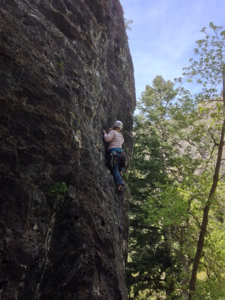 American Fork Canyon - Division Wall - Physical Therapy