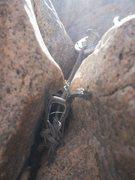 Slack Line Anchor 2