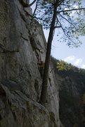 Rock Climbing Photo: Ecstasy Junior - Traverse