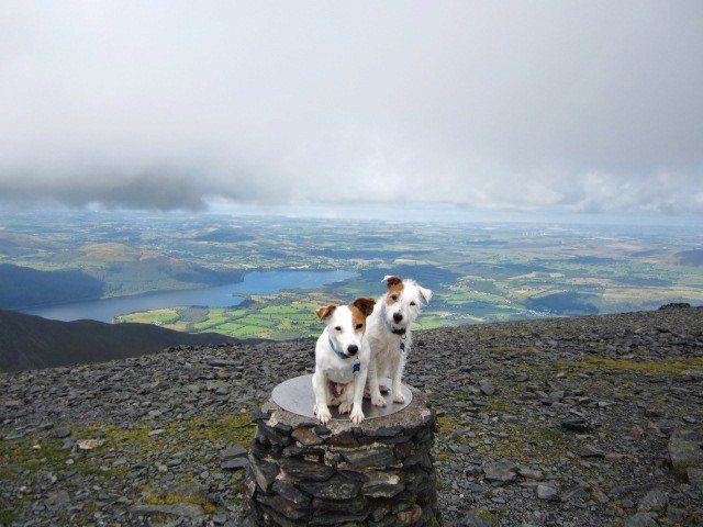 Skiddaw summit with Bassenthwaite Lake below and the Solway coast in the distance.