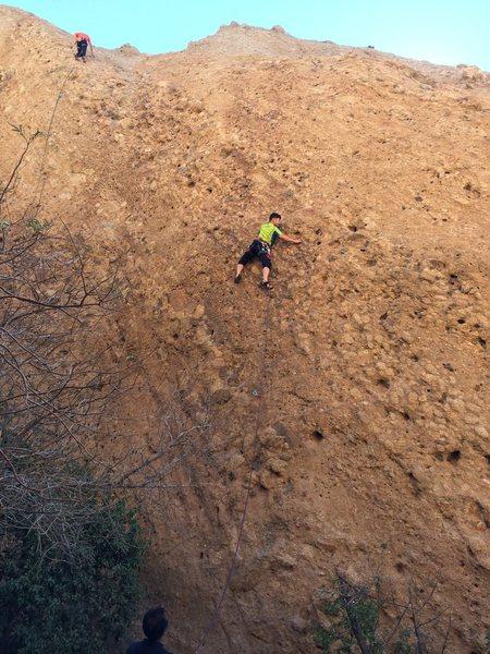 Climber on the Acme TR Wall.