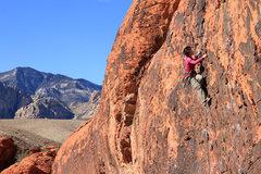 Red Rock Canyon during X'mas week