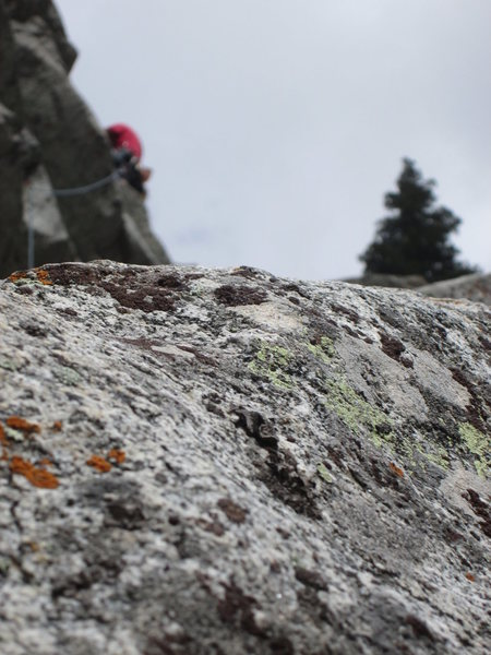 mossy crap granite