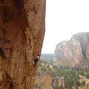 Rock Climbing Photo: Agro monkey