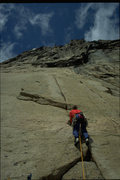 Rock Climbing Photo: Casey Shaw on the splitter first pitch of Leviatha...