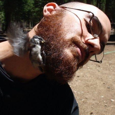 Birds and Beards
