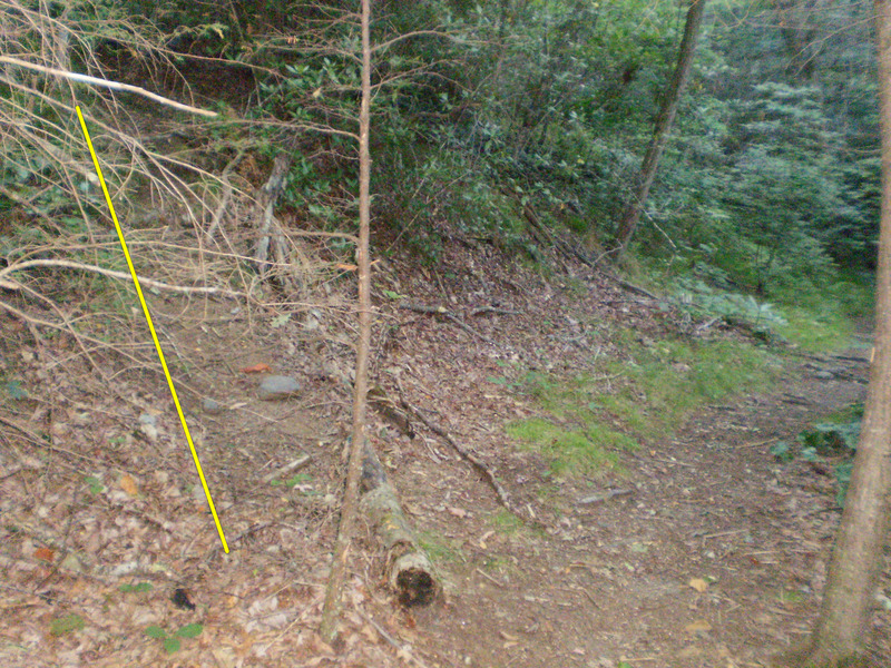 Rock Climbing Photo: After the steep section of trail after the creek c...