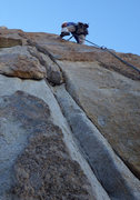 Rock Climbing Photo: Stoic Tree Arete
