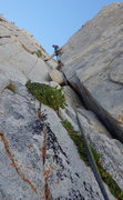 "Rock Climbing Photo: Top of the first pitch of ""Patricia Lake Grac..."