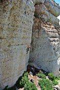 Rock Climbing Photo: Wild Iris, Zorro Wall
