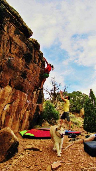 Rock Climbing Photo: Cecilia working the edges on Personal Flotation De...