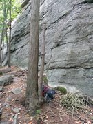 "Rock Climbing Photo: Look for this distinctive ""double tree"" ..."