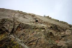 Rock Climbing Photo: Bill on the wall