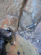 Rock Climbing Photo: This choss pile marks the start...