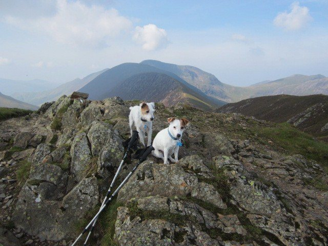 On the Summit of Causey Pike