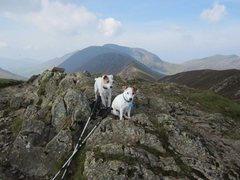 Rock Climbing Photo: On the Summit of Causey Pike
