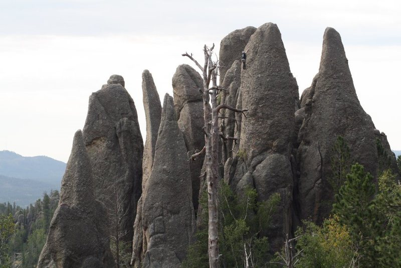 Rock Climbing Photo: Off with their heads...