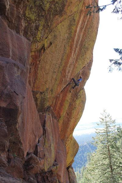 Rock Climbing Photo: Five Year Plan 2.