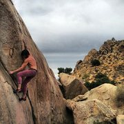 Rock Climbing Photo: Nicholas Rondilone on In the Picture.