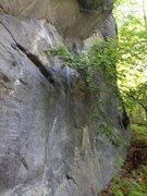 Rock Climbing Photo: The heavy brush makes a good topo photo difficult ...