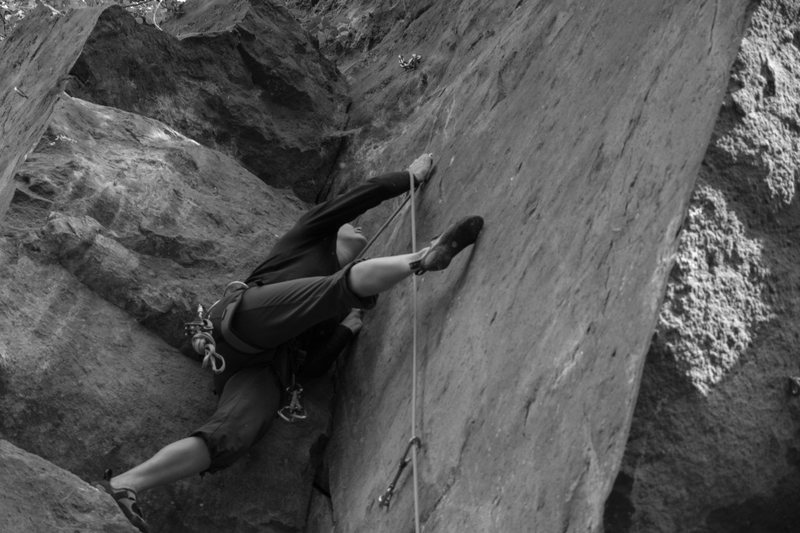 Rock Climbing Photo: Wildgans