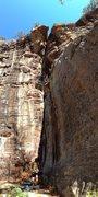 Rock Climbing Photo: Cosmic Hippo