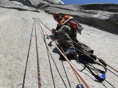 Rock Climbing Photo: Triple Direct on El Capitan