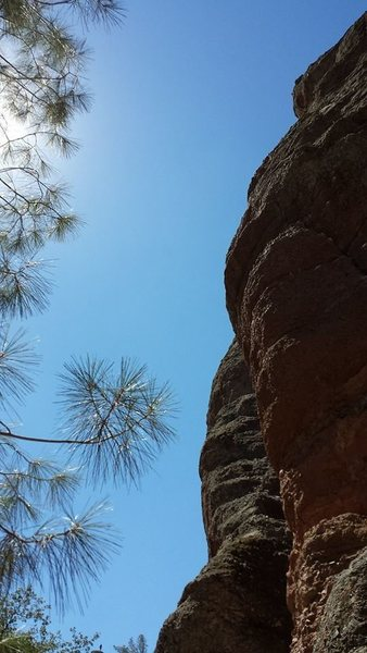 Rock Climbing Photo: It was very sunny...Taken from the base of the Dis...