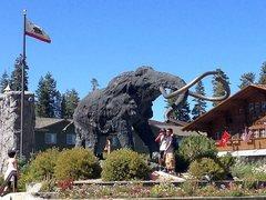 Rock Climbing Photo: Woolly at Mammoth Mountain Resort, Sierra Eastside