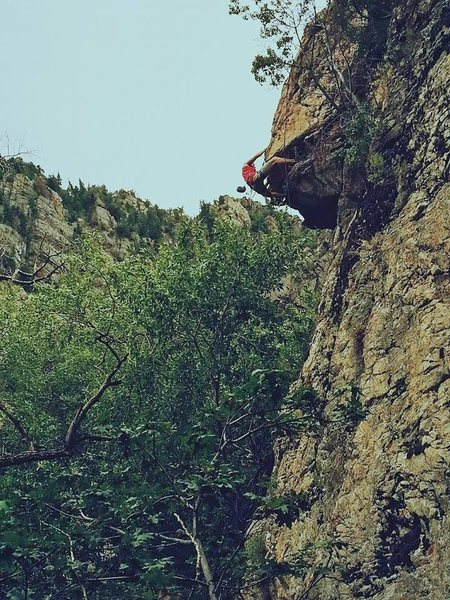 Rock Climbing Photo: Stephen Gill pulling the roof on Goth Girls (5.10b...