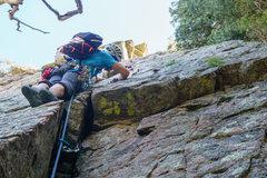 Rock Climbing Photo: Clay placing pro on the start of Estrellita