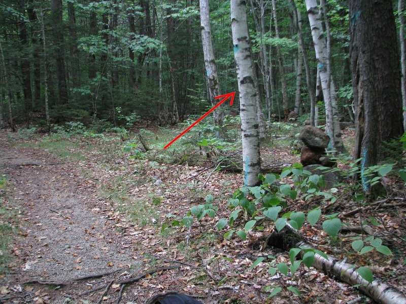 Cairn (2014) where you head in to the woods from the Nanamocomuc Ski trail, following a faint track to get you to a drainage which leads directly to Crack In Woods