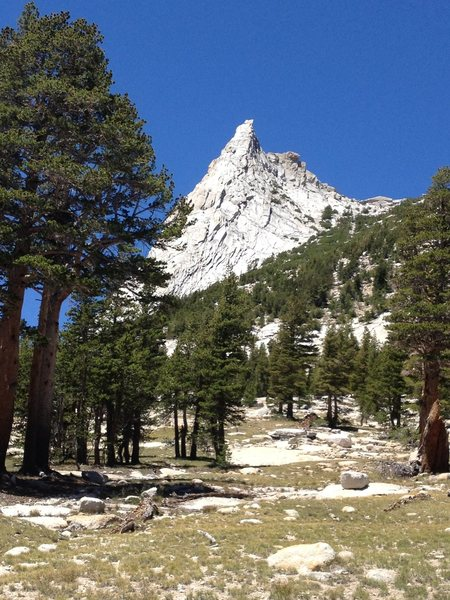 Cathedral Peak, Tuolumne Meadows, July 5, 2014