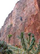 Rock Climbing Photo: Doing a little climbing at shelf.