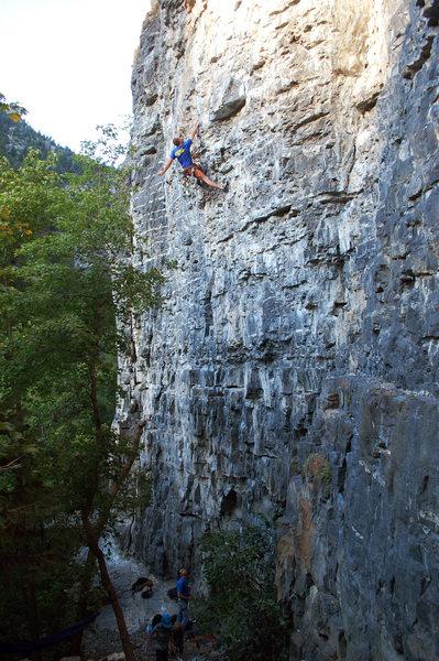 Rock Climbing Photo: Cody preparing for the hard 12a crux.