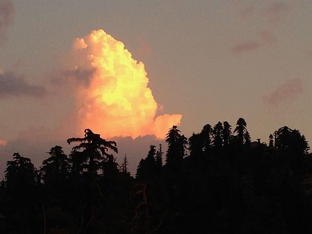 Thunderhead towering above the trees, Keller Peak