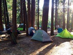 Rock Climbing Photo: camp 4