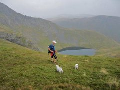Rock Climbing Photo: Descending via the Scales Fell trail .Passing abov...